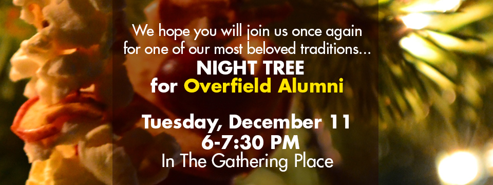 night-tree-slideshow