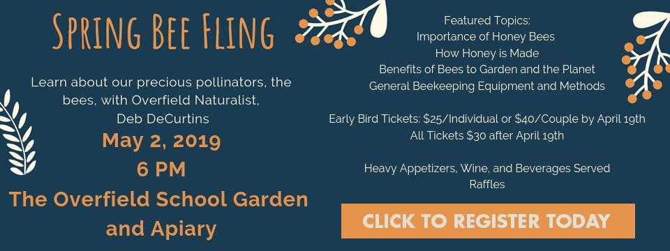 spring-bee-fling-slide